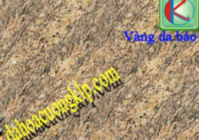 LEOPARD GOLD GRANITE
